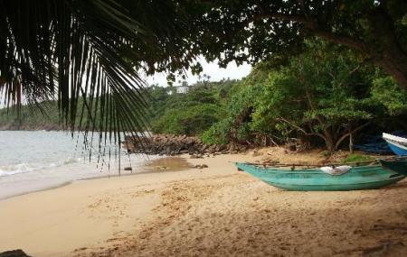 Jungle Beach Image