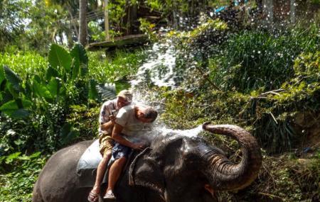 Sigiriya Elephant Ride, Sigiriya