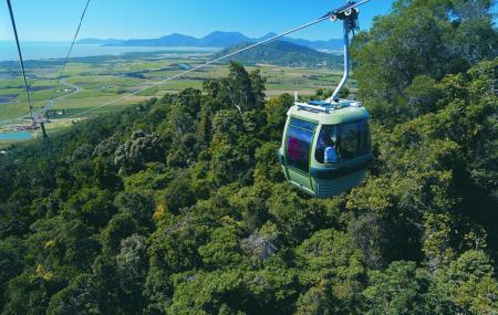 Skyrail Rainforest Cableway, Cairns