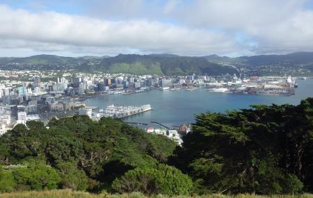 Mount Victoria Lookout, Wellington