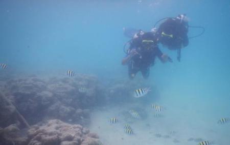 Blue Corals Dive, Havelock Island