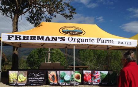 Freeman's Organic Farm, Currumbin