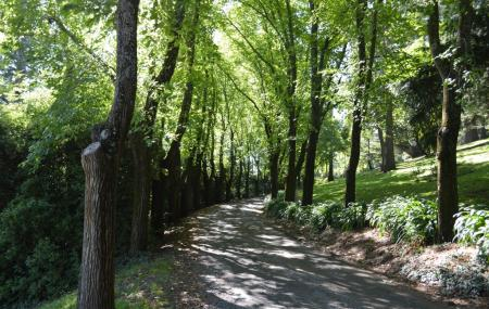 Wombat Hill Botanical Gardens Image