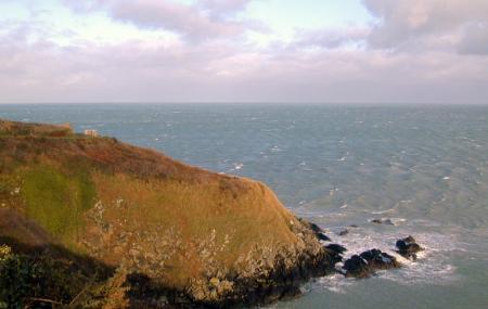 Saint-brieuc Bay Natural Reserve Image