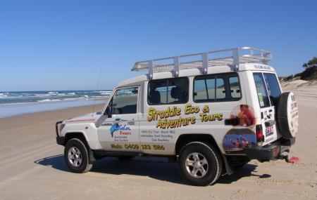 Straddie Kingfisher Tours Image