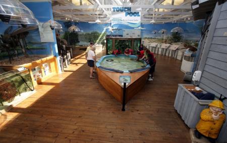 Marine Science Center, Daytona Beach