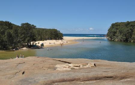 Wollongong Botanic Garden Image