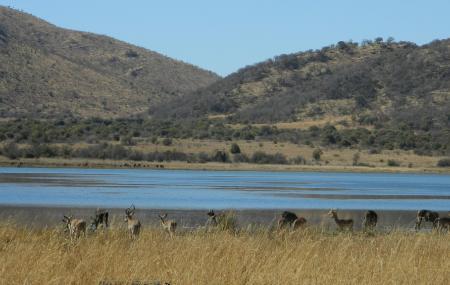 Mankwe Dam Region Image