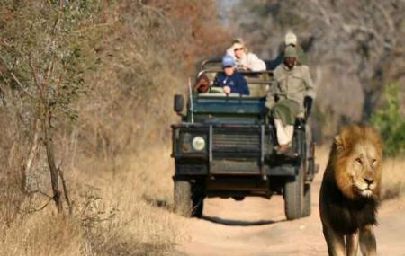 Pilanesberg Safaris, Pilanesberg National Park