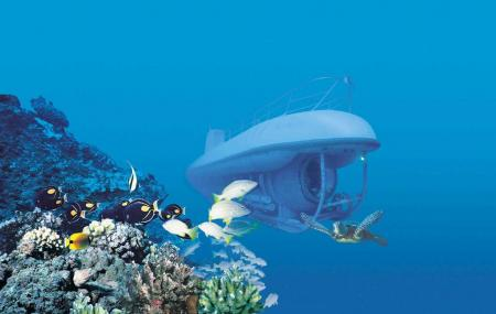 Maui Undersea Adventures, Wailea-makena