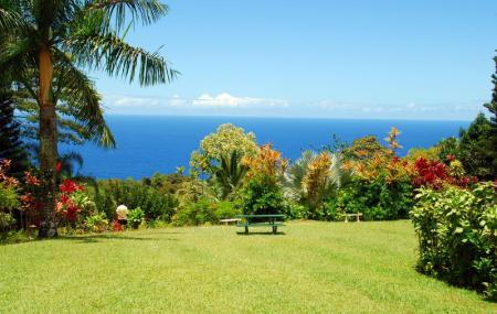 Maui Garden Of Eden, Maui