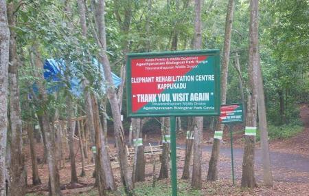 Kottoor Kappukadu Elephant Rehabilitation Centre, Trivandrum