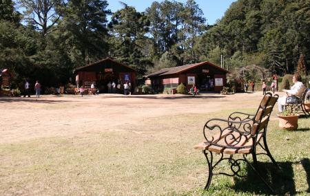 Horto Florestal, Campos Do Jordao