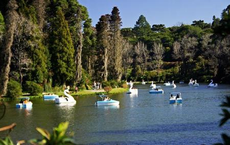 Parque Do Lago Negro Image