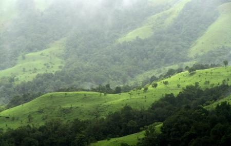 Gangamoola Hill, Chikmagalur