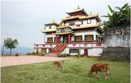 Zang Dhok Palri Monastery, Kalimpong