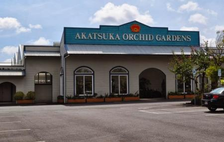 Akatsuka Orchid Gardens, Volcano