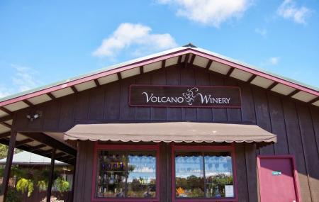 Volcano Winery, Volcano