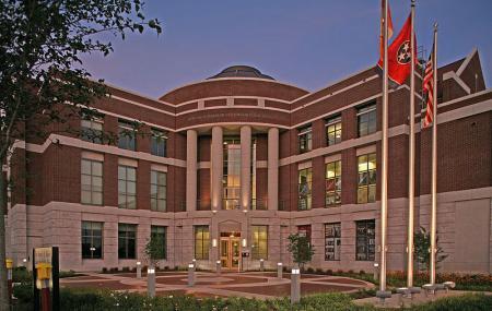 University Of Tennessee Image