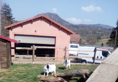 Villalobos Rescue Center Image