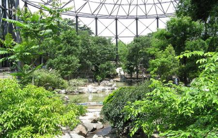 Tennoji Zoo, Osaka