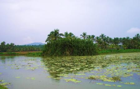 Vellayani Lake, Kovalam
