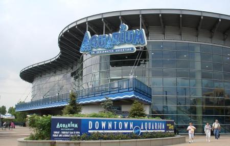 Downtown Aquarium Image