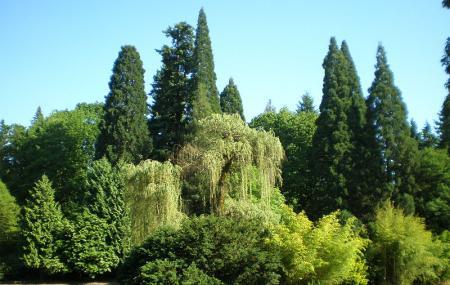 Laurelhurst Park Image