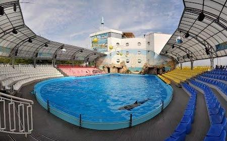 Dolphinarium Nemo, Odessa