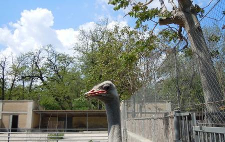 Odessa Zoo, Odessa