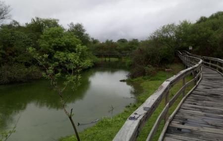 Reserva Natural Tara Inti, Termas De Rio Hondo