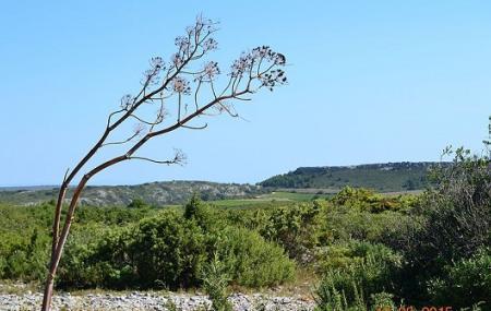 Narbonnaise En Mediterranee Natural Regional Park Image