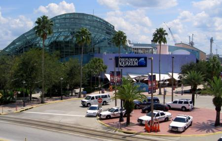 Florida Aquarium, Channelside Drive Image