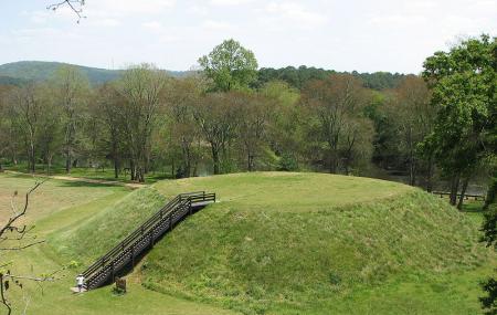 Etowah Indian Mounds Historic Site Image