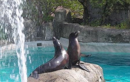 Pittsburgh Zoo And Ppg Aquarium, Pittsburgh