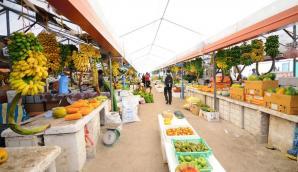 Male Market, Male