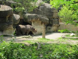 Cincinnati Zoo And Botanical Garden, Cincinnati