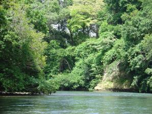 Costa Rica Unique Transfer And Tours, Liberia