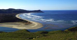 Otago Peninsula, Dunedin