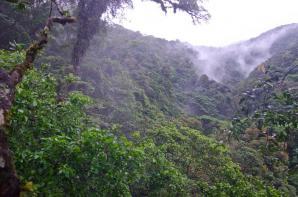 Tenorio Volcano National Park, Alajuela