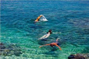 Snorkelling In Cavtat, Cavtat