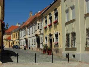 Gyor Old Town Area, Gyor