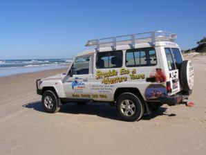 Straddie Kingfisher Tours, South Stradbroke