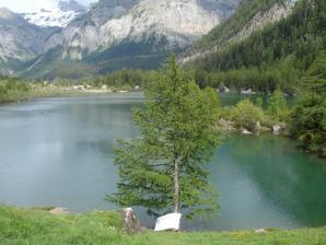 Derborence Lake, Sion