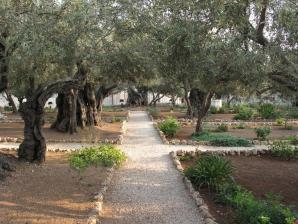 Gethsemane, Jerusalem
