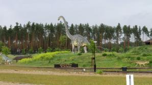 Tier- Und Freizeitpark Germendorf, Oranienburg