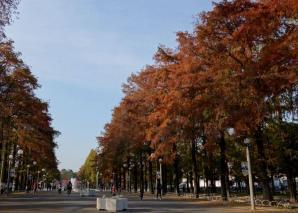 Tsurumiryokuchi Park, Osaka